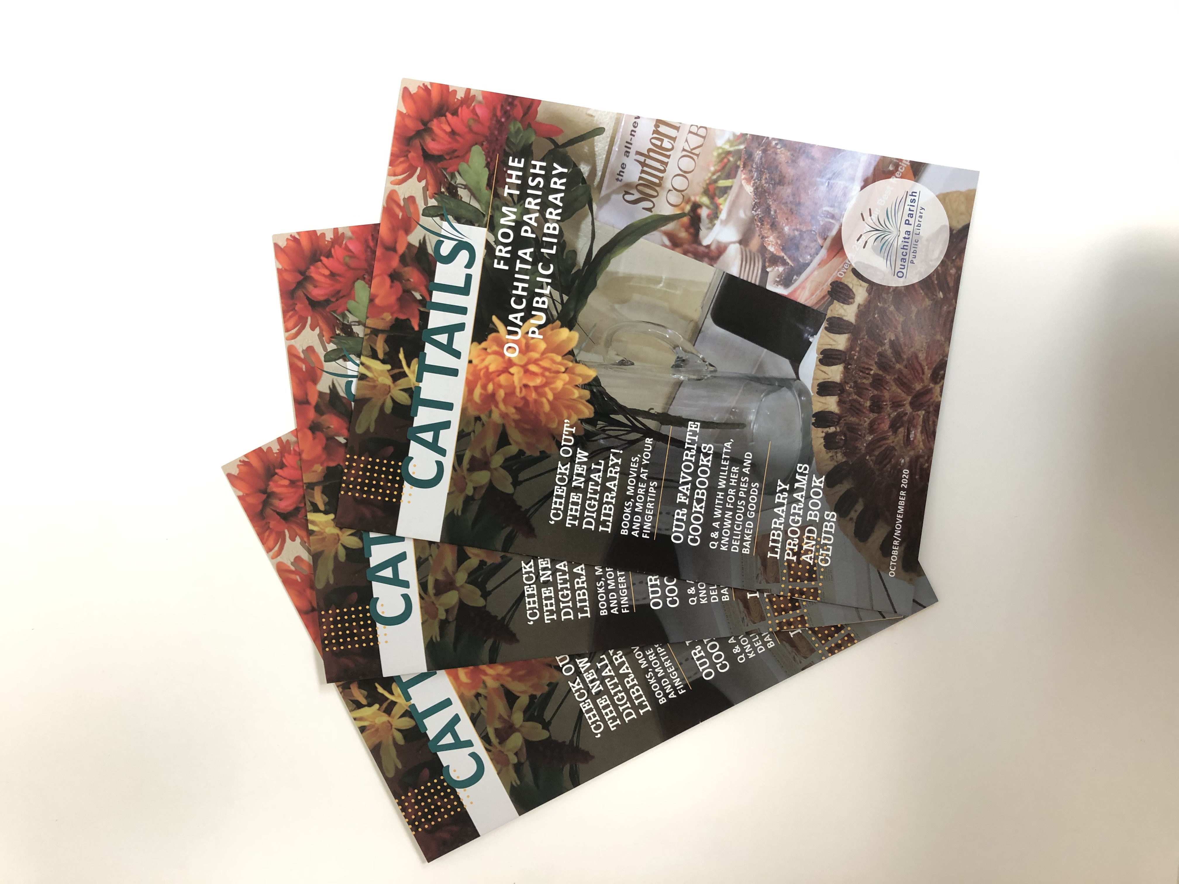 Cattails October/November Issue